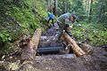 National Public Lands Day 2014 at Mount Rainier National Park (034), Narada.jpg