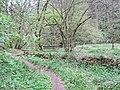 Naturschutzgebiet Eifgenbach.3.JPG