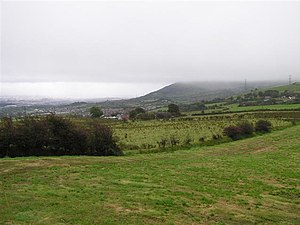 Near Squires Hill - geograph.org.uk - 1515444.jpg