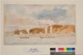 Nelson Regatta 1843.png