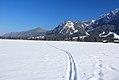 Neve, muita neve - Fussen - Alemanha (8746378666).jpg