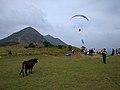 Ngong-ping-cow-pyramin-hill.jpg