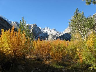 Big Pine Creek (California) - View of Norman Clyde Peak from Big Pine Creek, autumn