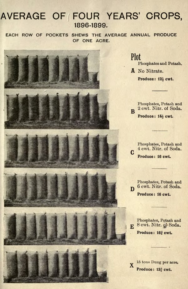 AVERAGE OF FOUR YEARS' CROPS, 1896-1899. EACH ROW OF POCKETS SHEWS THE AVERAGE ANNUAL PRODUCE OF ONE ACRE. Plot A Phosphates and Potash. No Nitrate. Produce : 12½ cwt. B Phosphates, Potash and 2 cwt. Nitr. of Soda. Produce : 14½ cwt. C Phosphates, Potash and 4 cwt. Nitr. of Soda. Produce : 16 cwt. D Phosphates, Potash and 6 cwt. Nitr. of Soda. Produce : 16 cwt. E Phosphates, Potash and 8 cwt. Nitr. of Soda. Produce: 16¾ cwt. X 15 tons Dung per acre. Produce: 13¾ cwt.