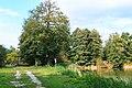 Novodvorský rybník II 01.jpg