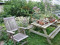 Nursery - Flickr - peganum (26).jpg