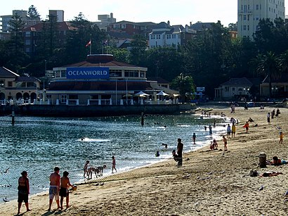 How to get to Manly Sea Life Sanctuary with public transport- About the place