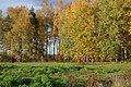 Olaine parish, Latvia - panoramio (53).jpg