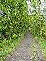 Old railway walk, Wyllie - geograph.org.uk - 429491.jpg