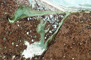 Ecoregion (WWF)