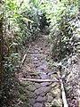 On the way-up^^^ - PARNASO - panoramio.jpg