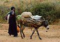 Oromo Woman, Ethiopia (14548863306).jpg