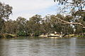 P.S. Cumberoona on the Murray River.jpg