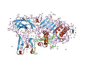 Colipase - Image: PDB 1lpb EBI