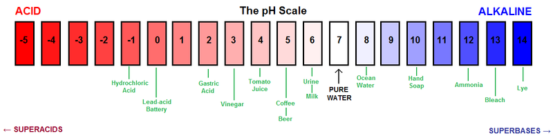 Testing pH Levels in Everyday Foods and Household Products