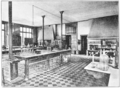 PSM V72 D024 Laboratory of dr roux at the pasteur institute.png