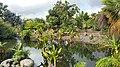 Palmetum7.jpg
