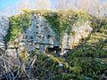 Pan de mur du château d'Arguel.jpg
