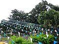 Pangil,LagunaTownHalljf7551 05.JPG