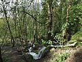Parc et bois de la Calamine (Chambéry).JPG