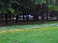 Park Bele Vode.jpg