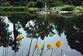 Park Szczytnicki, Ogród Japoński foto BMaliszewska.jpg