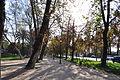 Parque Forestal (1).JPG