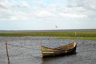 Lagoa do Peixe National Park - Image: Parque Nacional Lagoa do Peixe