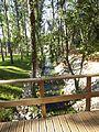 Parque Verde do Bonito - Ribeira - Pormenor2.jpg