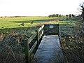 Path traversing marsh pasture - geograph.org.uk - 1110241.jpg