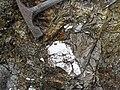Pegmatitic granite (White Cap Pegmatite, Paleoproterozoic, ~1.7 Ga; White Cap Mine, east of Keystone, Black Hills, South Dakota, USA) 6 (23245137264).jpg