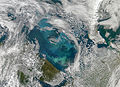 Phytoplankton Bloom in the Barents Sea.jpg