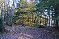 Piercefield, NY, USA - panoramio (4).jpg