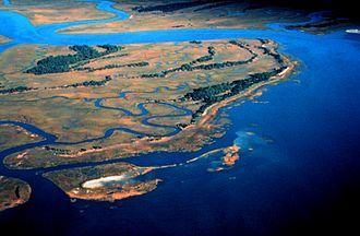 ACE Basin - Pine Island, ACE Basin National Estuarine Research Reserve