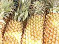 Pineapple fruit.JPG