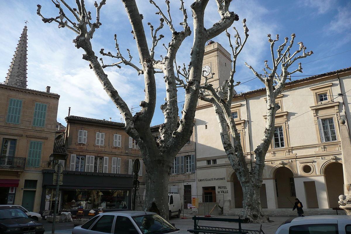 Saint r my de provence wikipedie for Entretien jardin st remy de provence