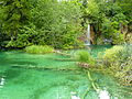 Plitvice Lakes , Croatia, summer 2011 (15).JPG