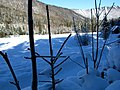 Podnar Bodental 01 2008 1230 Winter.JPG