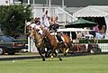 Polo at Ham Polo Club.jpg