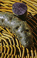 Pommes de terre (VIOLETTE) CL Jean Weber (23381593340).jpg