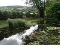 Pond at Brobury House Garden - geograph.org.uk - 545492.jpg