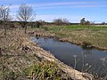 Pond at Low Park - geograph.org.uk - 1805472.jpg
