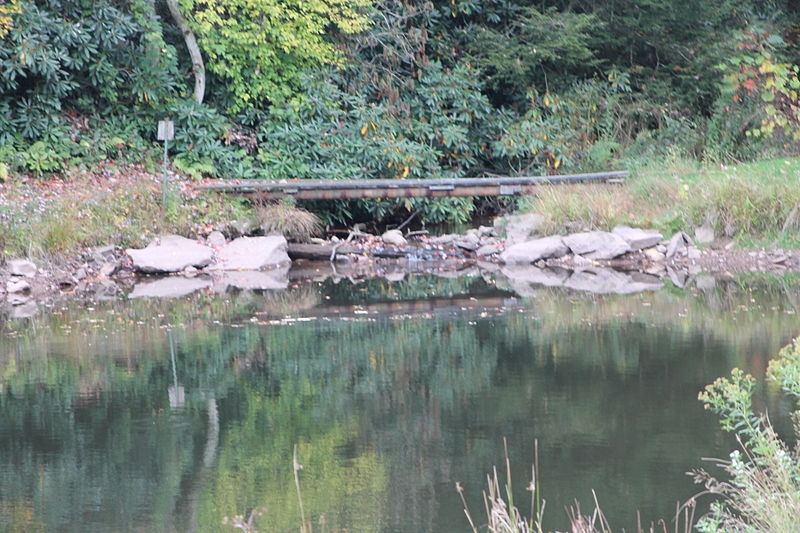File:Pond on Stony Run 3.JPG