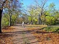 Praha, Holešovice, podzim na Letné.jpg