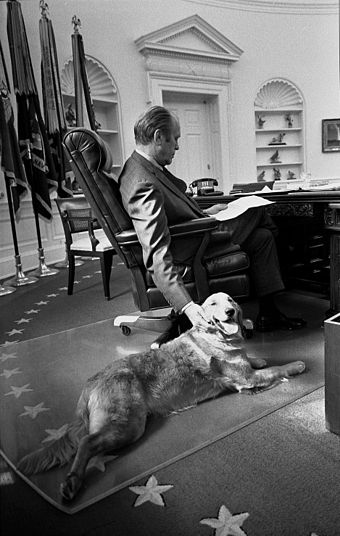 Ford and his golden retriever, Liberty, in the Oval Office, 1974 President Ford and his golden retriever Liberty - NARA - 6829597.jpg