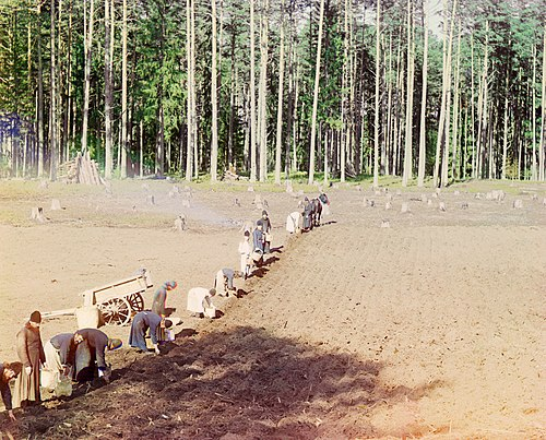 Orthodox monks farming potatoes in Russia, c. 1910 Prokudin-Gorskii-39.jpg