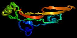 Proteino TGFB2 PDB 1tfg.png