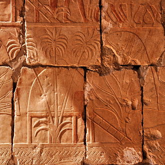 Land of Punt - This relief depicts incense and myrrh trees obtained by Hatshepsut's expedition to Punt