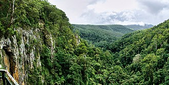Gold Coast, Queensland - View from the lookout at Purling Brook Falls in the Gold Coast hinterland