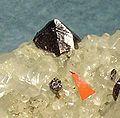Pyrochlore-Vesuvianite-Phlogopite-171776.jpg